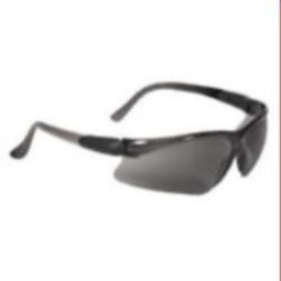 Radians Basin Safety Eyewear BA1-21 Smoke Anti-Fog