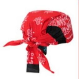 Radians RCS307 Arctic Radwear Cooling Headshade - Red Paisley