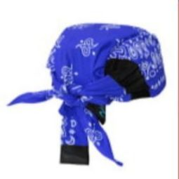 Radians RCS308 Arctic Radwear Cooling Headshade - Blue Paisley